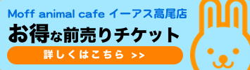 Moff アニマル カフェ イーアス 高尾店